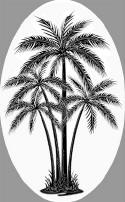 Center Palm Tree Decal